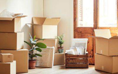 Comment déménager des plantes