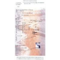 Carte Grise : les documents nécessaires au changement d'adresse